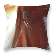 I Got My Eyes On You Throw Pillow by Evelina Kremsdorf