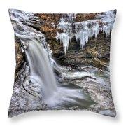 Ice Breaker Throw Pillow by Evelina Kremsdorf