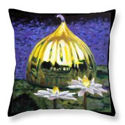 Image Number Eleven Throw Pillow by John Lautermilch