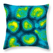 Influenza Viruses, Tem Throw Pillow by Omikron