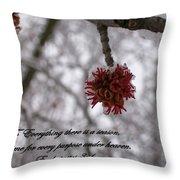 Inspirations 11 Throw Pillow by Sara  Raber
