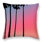 Intercoastal Sunset Throw Pillow by Bill Cannon