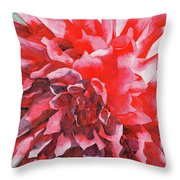 Interesting Throw Pillow by Ken Powers
