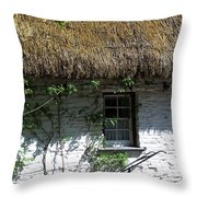 Irish Farm Cottage Window County Cork Ireland Throw Pillow by Teresa Mucha