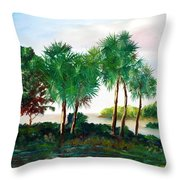 Isle Of Palms Throw Pillow by Phil Burton