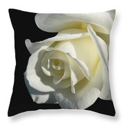 Ivory Rose Flower On Black Throw Pillow by Jennie Marie Schell