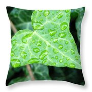 Ivy Leaf Throw Pillow by Michael Peychich