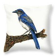 Jay Throw Pillow by Shari Nees