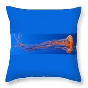 Jelly Fish Throw Pillow by Darcy Michaelchuk