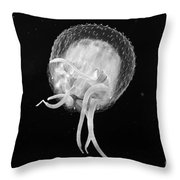 Jellyfish - Bw Throw Pillow by Dave Fleetham - Printscapes