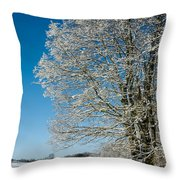 Jenne Farm Winter in Vermont Throw Pillow by Edward Fielding