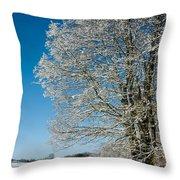 Jenne Farm Winter In Vermont Throw Pillow by Edward Fielding
