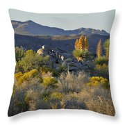 Joshua Tree National Park In California Throw Pillow by Christine Till