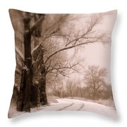 Just Around the Bend  Throw Pillow by Carol Groenen