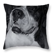 Just Handsome II Throw Pillow by DigiArt Diaries by Vicky B Fuller