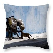 Kasbah Cat Throw Pillow by Peter Verdnik