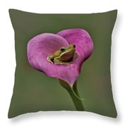 Kermit Hangs Out Throw Pillow by Susan Candelario