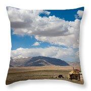 Kirgizian Jurts Throw Pillow by Konstantin Dikovsky
