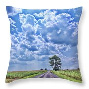 Knowing The Right Way Throw Pillow by Cathy  Beharriell