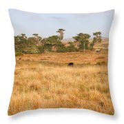 Landscape With Cows Grazing In The Field . 7d9957 Throw Pillow by Wingsdomain Art and Photography