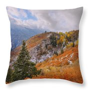 Last Fall Throw Pillow by Chad Dutson