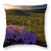 Last Light Of Spring Throw Pillow by Mike  Dawson