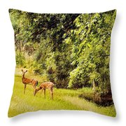 Late Summer Deer Throw Pillow by Jan Amiss Photography