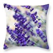 Lavender Blue Throw Pillow by Frank Tschakert