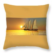 Light Of Life Throw Pillow by Corey Ford