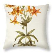 Lilium Penduliflorum Throw Pillow by Pierre Joseph Redoute