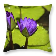 Lilly Buds Throw Pillow by Teresa Mucha