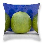 Lime Throw Pillow by Frank Tschakert