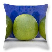 Lime Throw Pillow by Frank Tschakert