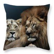 Lion Family Throw Pillow by Julie L Hoddinott