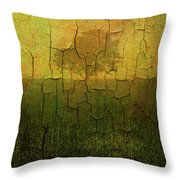 Lone Tree In Meadow -textured Throw Pillow by Dave Gordon