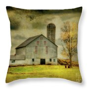 Looking For Dorothy Throw Pillow by Lois Bryan