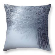 Lost Way Throw Pillow by Evgeni Dinev