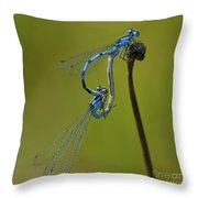 Love Dance.. Throw Pillow by Nina Stavlund