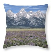 Lupine And Grand Tetons Throw Pillow by Sandra Bronstein