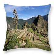 Machu Picchu And Bromeliad Throw Pillow by James Brunker