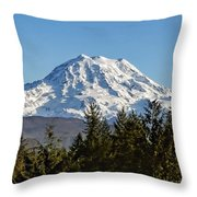 Majestic Throw Pillow by Kelley King