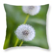 Make A Wish Dandelion Throw Pillow by Christina Rollo