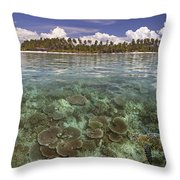 Malaysia, Mabul Island Throw Pillow by Dave Fleetham - Printscapes