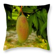 Mango Work Number One Throw Pillow by David Lee Thompson