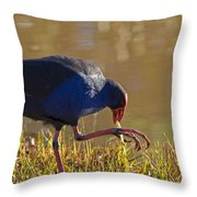 March Of The Swamphen Throw Pillow by Mike  Dawson