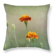Marigold Fancy Throw Pillow by Kim Hojnacki