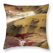 Marked Hills Throw Pillow by Mike  Dawson
