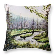 Marsh Lands Throw Pillow by Richard T Pranke