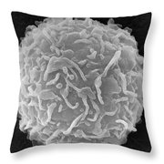 Mast Cell Sem Throw Pillow by Don Fawcett and E Shelton and Photo Researchers