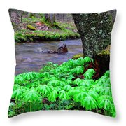 May-apples And Middle Fork Of Williams River Throw Pillow by Thomas R Fletcher